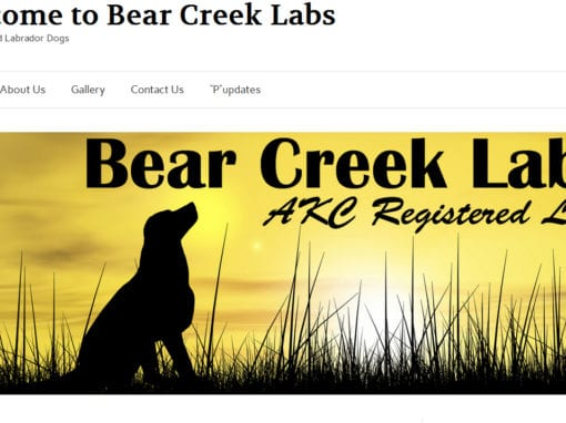 Bear Creek Labs