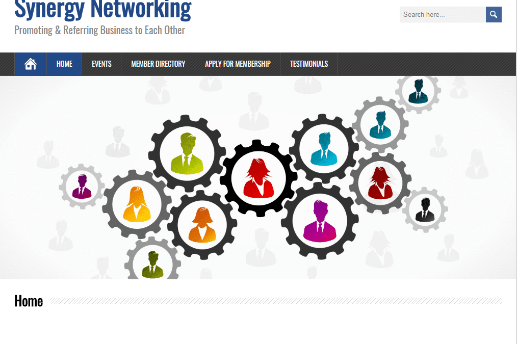 Synergy Networking